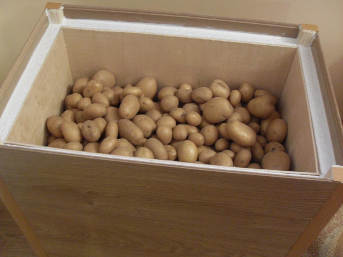 Ящики в подвале своими руками под картошку фото 947