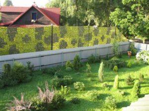 Садовые кустарники вдоль ограждений