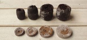 Как сажать в торфяные таблетки семена