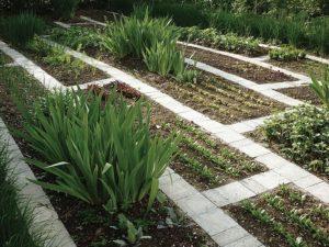 Чем и как можно огородить грядки на даче