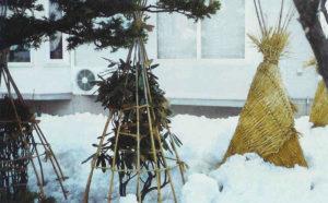 kakie-podruchnye-materialy-mozhno-ispolzovat-dlya-ukratiya-rastenij-na-zimu